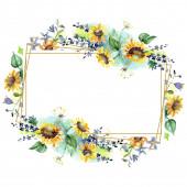Csokor napraforgós virágos botanikai virágok. Vad tavaszi levél vadvirág. Akvarell háttér illusztráció meg. Akvarell rajz divat Aquarelle. Keretszegély kristály Dísz tér.