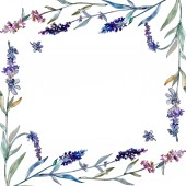 Lavender floral botanical flowers. Watercolor background illustration set. Frame border ornament square.
