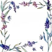 Fotografie Lavender floral botanical flowers. Watercolor background illustration set. Frame border ornament square.