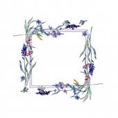 Fotografie Levandule květinové botanické květy. Vodný obrázek pozadí-barevný. Orámovaná hranatá hranice.