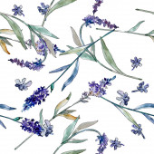 Lavendel blühende botanische Blumen. Aquarell Hintergrundillustration Set. nahtloses Hintergrundmuster.
