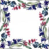 Levandule květinové botanické květy. Vodný obrázek pozadí-barevný. Orámovaná hranatá hranice.