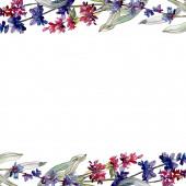 Levendula virágos botanikus virágok. Akvarell háttér illusztráció meg. Keretszegély Dísz tér.