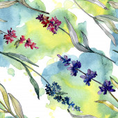 Lavender floral botanical flowers. Watercolor background illustration set. Seamless background pattern.