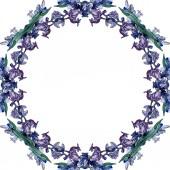 Fényképek Levendula virágos botanikus virágok. Vad tavaszi levél vadvirág elszigetelt. Akvarell háttér illusztráció meg. Akvarell rajz divat Aquarelle elszigetelt. Keretszegély Dísz tér.