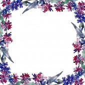 Levendula virágos botanikus virágok. Vad tavaszi levél vadvirág elszigetelt. Akvarell háttér illusztráció meg. Akvarell rajz divat Aquarelle elszigetelt. Keretszegély Dísz tér.