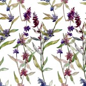 Photo Purple lavender floral botanical flowers. Wild spring leaf wildflower. Watercolor illustration set. Watercolour drawing fashion aquarelle. Seamless background pattern. Fabric wallpaper print texture.