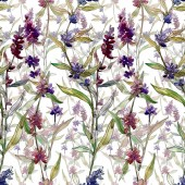 Fotografie Purple lavender floral botanical flowers. Wild spring leaf wildflower. Watercolor illustration set. Watercolour drawing fashion aquarelle. Seamless background pattern. Fabric wallpaper print texture.