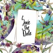 Fialové levandule květinové botanické květy. Divoké květinové listí. Vodný obrázek pozadí-barevný. Akvarel na kreslicím módu Aquarelle. Orámovaná hranatá hranice.