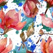 Camelie květinové botanické květiny. Vodný obrázek pozadí-barevný. Bezespání vzorek pozadí.