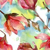 Fényképek Camelia virágos botanikai virágok. Akvarell háttér illusztráció meg. Folytonos háttérmintázat.