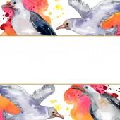 Sky madár sirály a vadon élő állatok. Vad szabadság, madár-val egy repülő sárvédő. Akvarell háttér illusztráció meg. Akvarell rajz divat Aquarelle elszigetelt. Keretszegély Dísz tér.