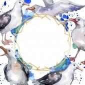 Nebeský pták Racek v divoké přírodě. Divoká svoboda, pták s létajícími křídly. Vodný obrázek pozadí-barevný. Akvarel na kreslicím módu Aquarelle. Orámovaná hranatá hranice.
