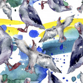 Sky madár sirály a vadon élő állatok. Vad szabadság, madár-val egy repülő sárvédő. Akvarell illusztráció meg. Akvarell rajz divat Aquarelle. Folytonos háttérmintázat. Szövet tapéta nyomtatási textúra.