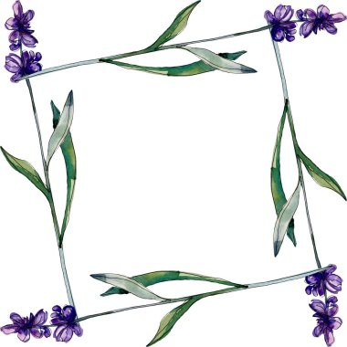 Lavender floral botanical flowers. Wild spring leaf wildflower isolated. Watercolor background illustration set. Watercolour drawing fashion aquarelle isolated. Frame border ornament square. stock vector