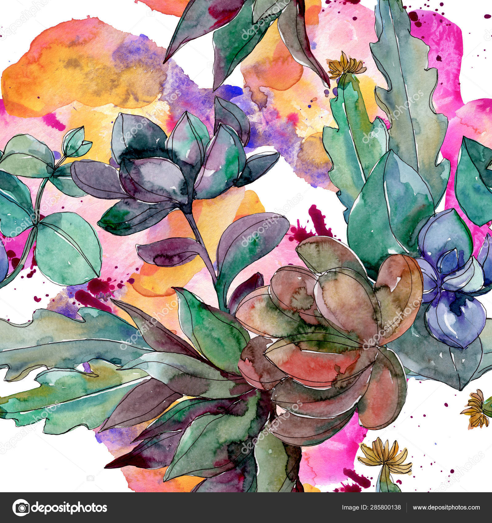 ᐈ Watercolor Succulent Stock Backgrounds Royalty Free Watercolor Succulent Painting Images Download On Depositphotos