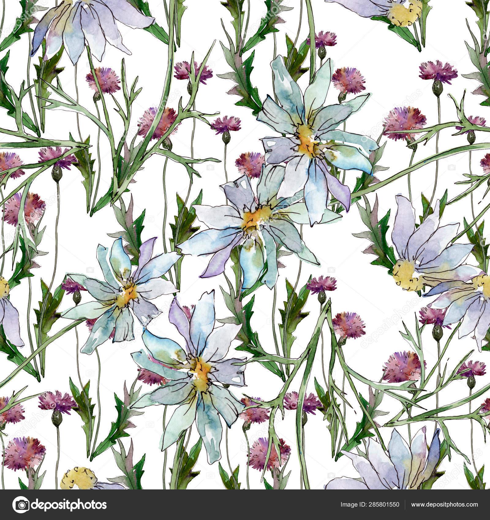 Wildflowers Floral Botanical Flowers Wild Spring Leaf