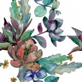 Sukkulenten florale botanische Blumen. wilde Frühlingsblume. Aquarell-Illustrationsset vorhanden. Aquarell zeichnen Mode-Aquarell. nahtlose Hintergrundmuster. Stoff Tapete drucken Textur.