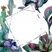 Sukkulenten florale botanische Blumen. wildes Frühlingsblatt Wildblume isoliert. Aquarell Hintergrundillustration Set. Aquarellzeichnung Modeaquarell isoliert. Rahmen Rand Ornament Quadrat.