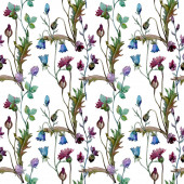 Wildflowers floral botanical flowers. Watercolor background illustration set. Seamless background pattern.