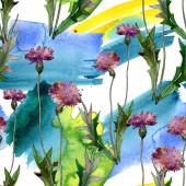 Wildflowers virágos botanikai virágok. Vad tavaszi levél vadvirág. Akvarell illusztráció meg. Akvarell rajz divat Aquarelle. Folytonos háttérmintázat. Szövet tapéta nyomtatási textúra.