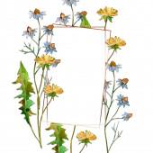 Květinové květiny. Divoké květinové listí. Vodný obrázek pozadí-barevný. Akvarel na kreslicím módu Aquarelle. Orámovaná hranatá hranice.