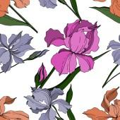 Květinové botanické květy. Černé a bílé ryté inkoustem. Bezespání vzorek pozadí.