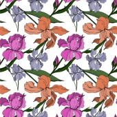 Vector Iris floral botanical flowers. Black and white engraved ink art. Seamless background pattern.