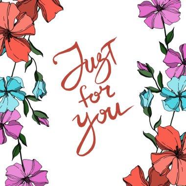 Vektör Keten çiçek botanik çiçekler. Siyah ve beyaz oyulmuş mürekkep sanatı. Çerçeve kenarlık süs karesi.
