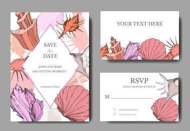 Vector Summer beach seashell tropical elements. Engraved ink art. Wedding background card decorative border. Thank you, rsvp, invitation elegant card illustration graphic set banner. clip art vector