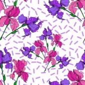 Vektor Iris virágos botanikai virágok. Fekete-fehér vésett tinta Art. Folytonos háttérmintázat.