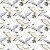 Sky madár sirály a vadon élő állatok. Fekete-fehér vésett tinta Art. Folytonos háttérmintázat.