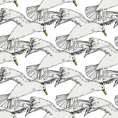 Sky bird seagull in a wildlife. Wild freedom, bird with a flying wings. Black and white engraved ink art. Seamless background pattern. Fabric wallpaper print texture. clip art vector