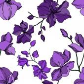 Vektorové orchideje květinové botanické květiny. Černý a fialový ryzovaný inkoust. Bezespání vzorek pozadí.