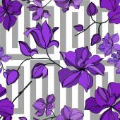 Fotografie Vektorové orchideje květinové botanické květiny. Černý a fialový ryzovaný inkoust. Bezespání vzorek pozadí.