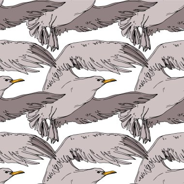 Vector Sky bird seagull in a wildlife. Wild freedom, bird with a flying wings. Black and white engraved ink art. Seamless background pattern. Fabric wallpaper print texture. clip art vector