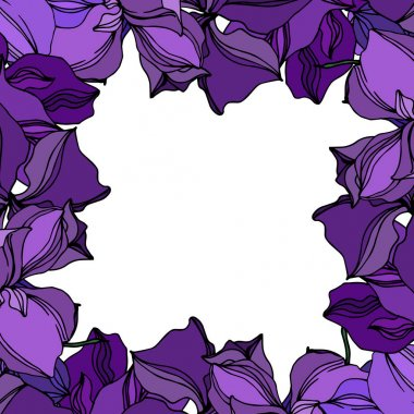 Vector Orchid floral botanical flowers. Wild spring leaf wildflower isolated. Black and purple engraved ink art. Frame border ornament square on white background. clip art vector