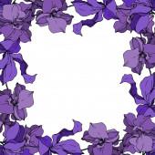 Vector Orchid floral botanical flowers. Black and white engraved ink art. Frame border ornament square.