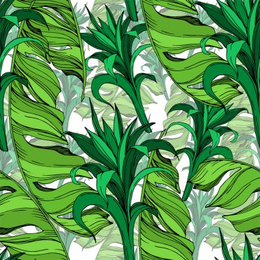 Vector Exotic tropical hawaiian summer. Palm beach tree leaves jungle botanical succulent. Black and white engraved ink art. Seamless background pattern. Fabric wallpaper print texture. clip art vector