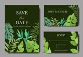 Plážový strom Vector Palm opouští botanickou džungli. Černé a bílé ryté inkoustem. Okraj svatební karty.