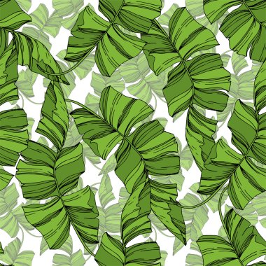 Vector Palm beach tree leaves jungle botanical plant. Black and white engraved ink art. Seamless background pattern.