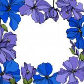 Vektorové botanické květiny lnu. Černé a bílé ryté inkoustem. Orámovaná hranatá hranice.