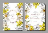 Vektor Narcissus virágos botanikai virágok. Fekete-fehér vésett tinta Art. Esküvői háttér-kártya dekoratív határon.