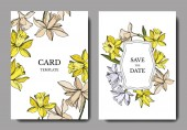 Photo Vector Narcissus floral botanical flowers. Black and white engraved ink art. Wedding background card decorative border.
