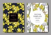 Květinové botanické květiny Vector Narcissus. Černé a bílé ryté inkoustem. Ozdobný okraj svatební karty.