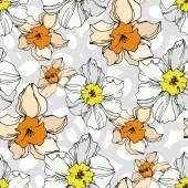Vektor Narcissus virágos botanikus virág. Fekete-fehér vésett tinta Art. Folytonos háttérmintázat.