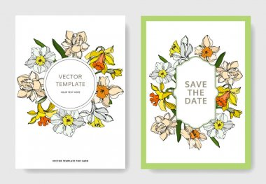 Vector Narcissus floral botanical flower. Black and white engraved ink art. Wedding background card decorative border. Thank you, rsvp, invitation elegant card illustration graphic set banner. clip art vector