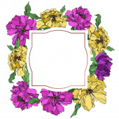 Peony floral botanical flowers. Black and white engraved ink art. Frame border ornament square.