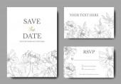 Bazsarózsa virágos botanikus virágok. Fekete-fehér vésett tinta Art. Esküvői háttérkártya virág dekoratív határon.