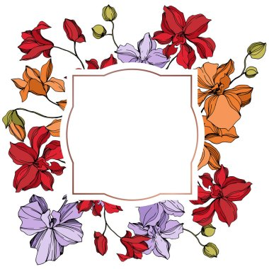 Orchid floral botanical flowers. Wild spring leaf wildflower isolated. Black and white engraved ink art. Frame border ornament square on white background. clip art vector